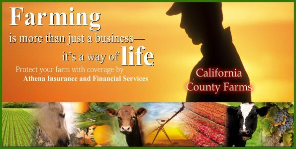 California Farm Insurance