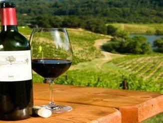 winery and vineyard insurance